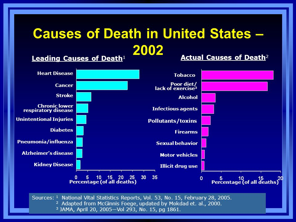 Causes of Death in United States – 2002
