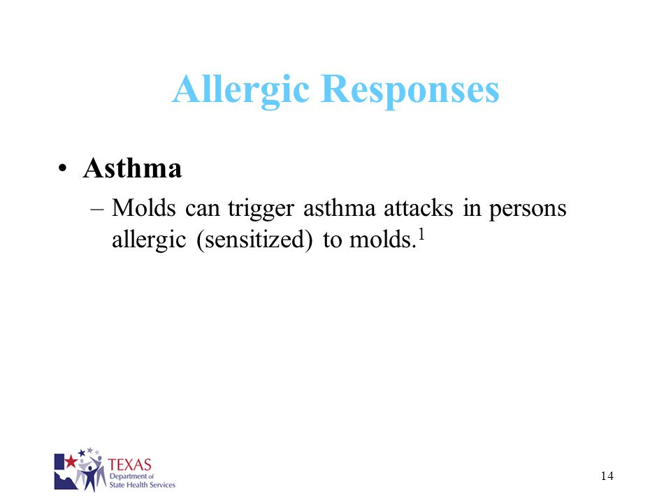 Allergic Responses Asthma
