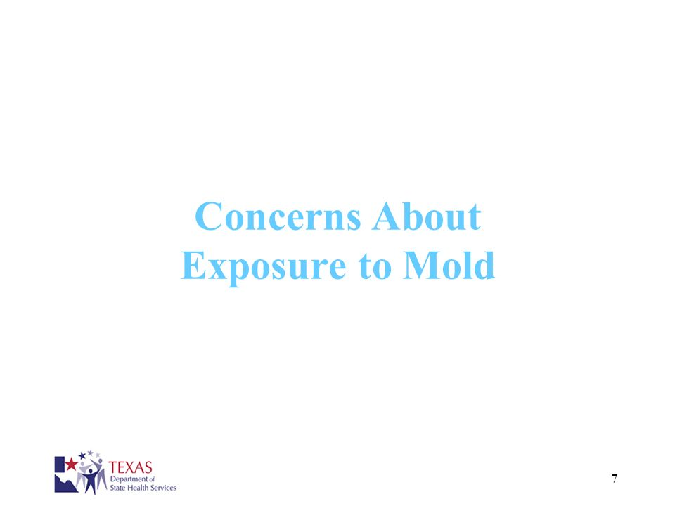 Concerns About Exposure to Mold