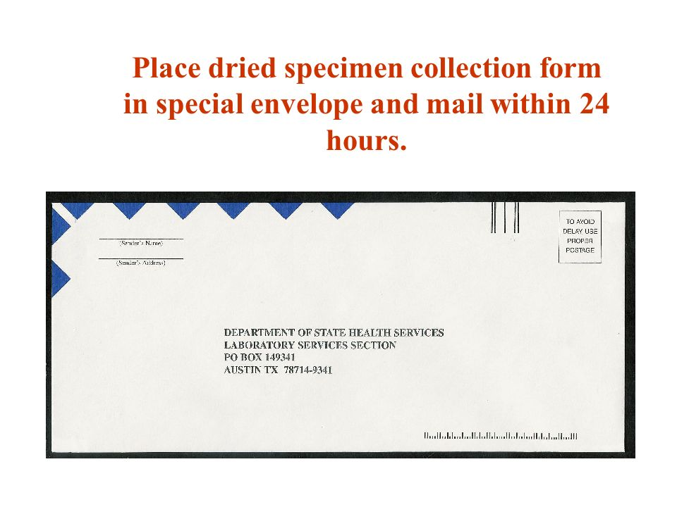 Place dried specimen collection form in special envelope and mail within 24 hours.
