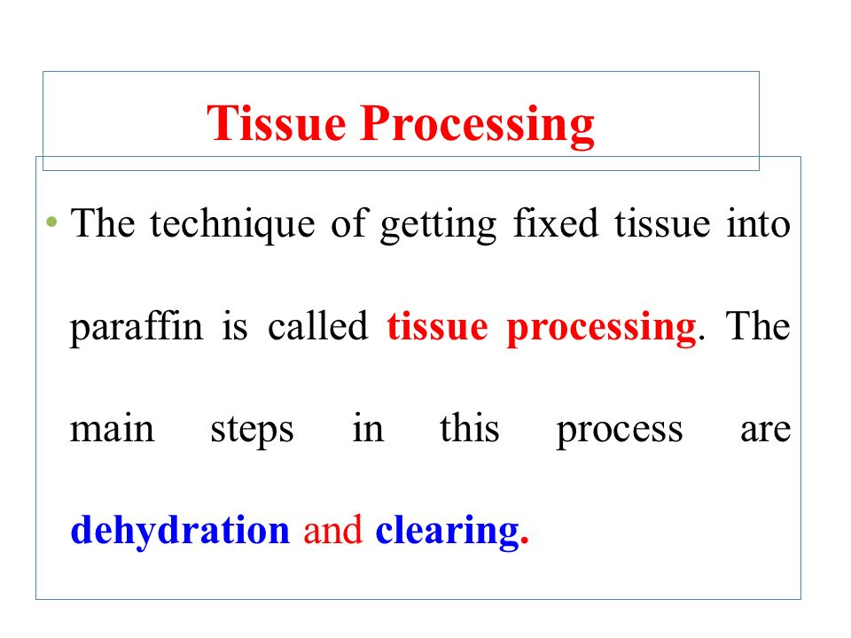 tissue fixation and processing