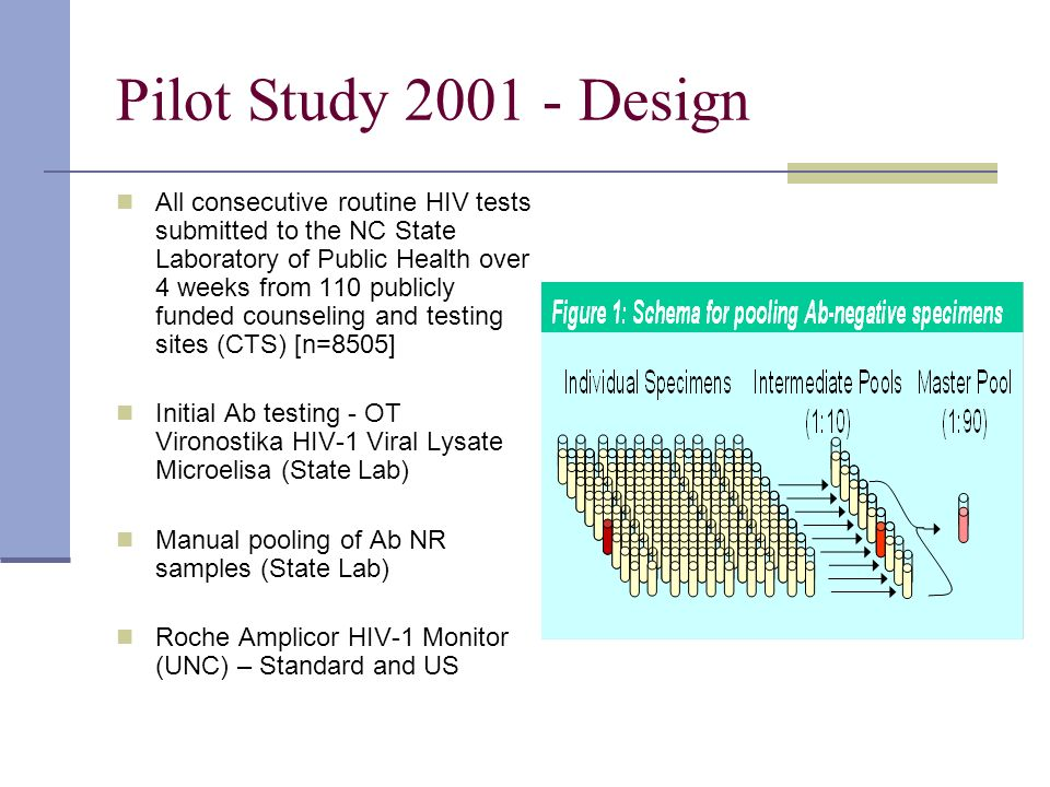 Pilot Study 2001 - Design