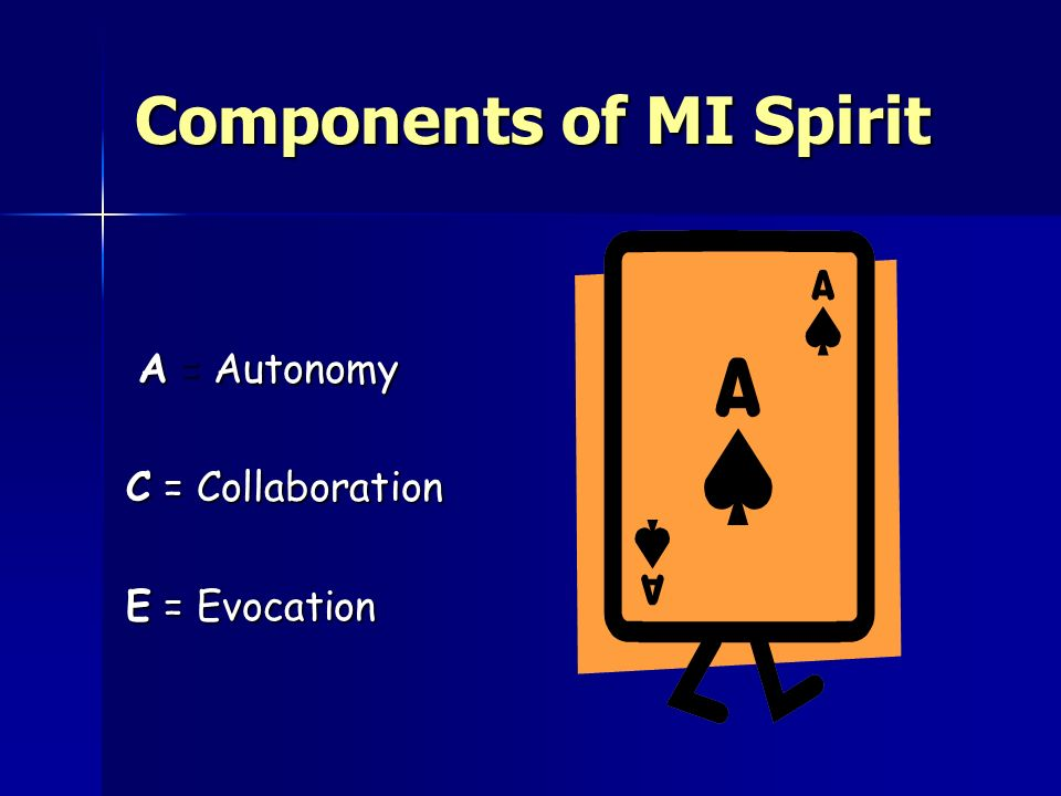 Components of MI Spirit