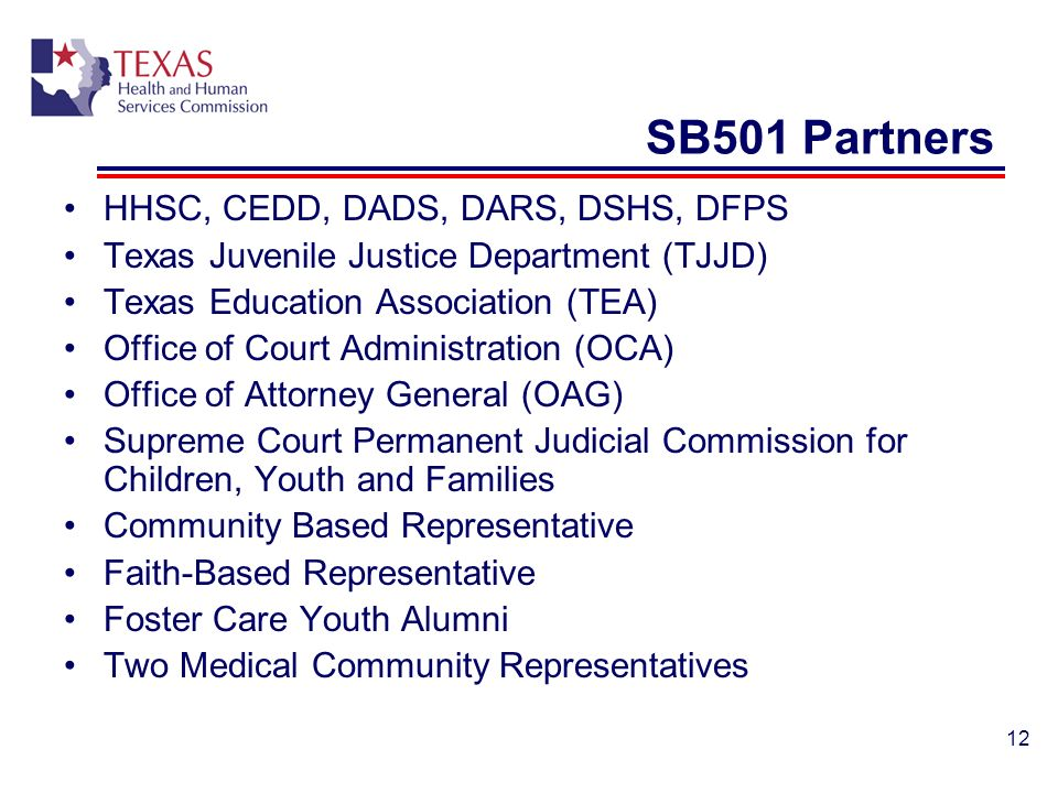 SB501 Partners HHSC, CEDD, DADS, DARS, DSHS, DFPS