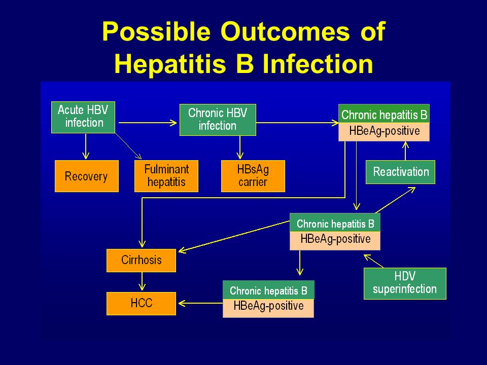 Possible Outcomes of Hepatitis B Infection