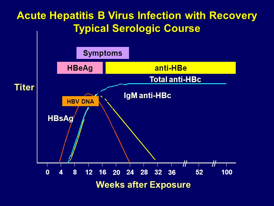 Acute Hepatitis B Virus Infection with Recovery