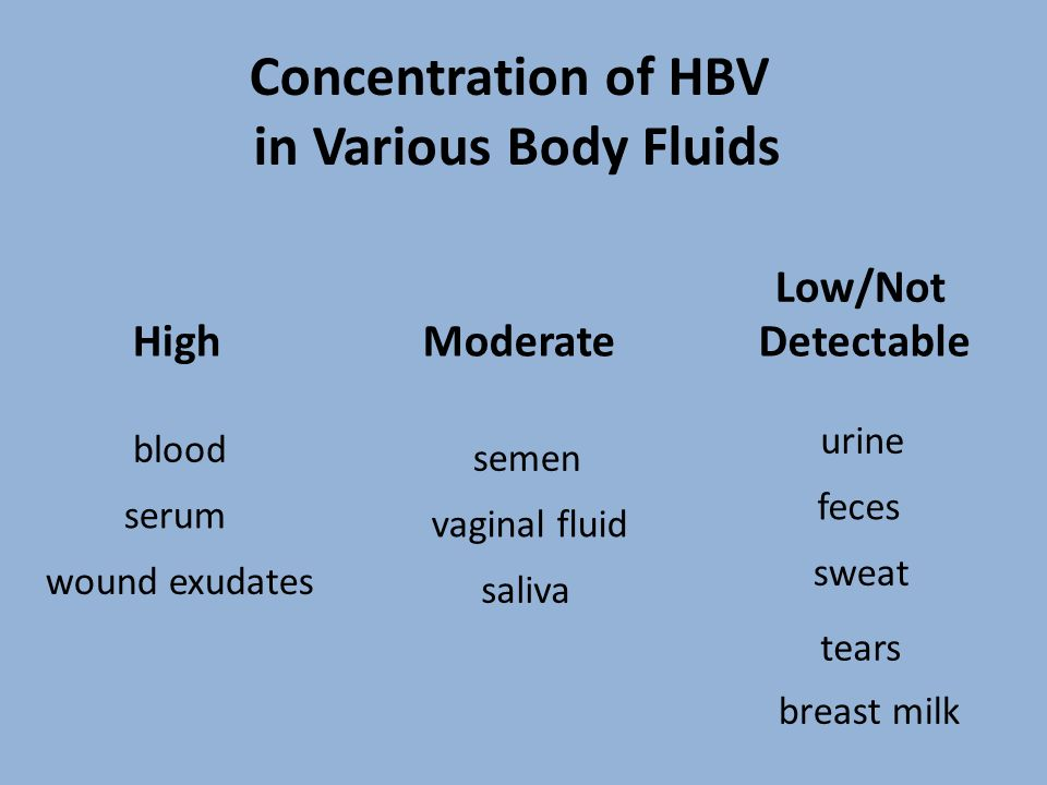Concentration of HBV in Various Body Fluids