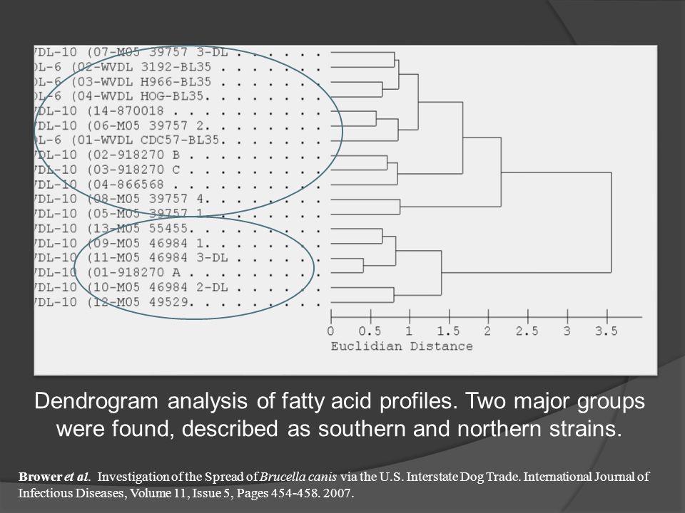 Dendrogram analysis of fatty acid profiles
