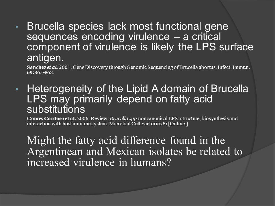 Brucella species lack most functional gene sequences encoding virulence – a critical component of virulence is likely the LPS surface antigen.