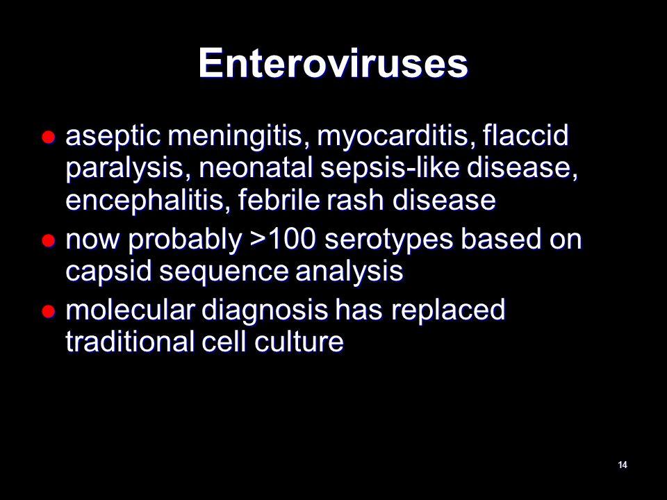 Enteroviruses aseptic meningitis, myocarditis, flaccid paralysis, neonatal sepsis-like disease, encephalitis, febrile rash disease.