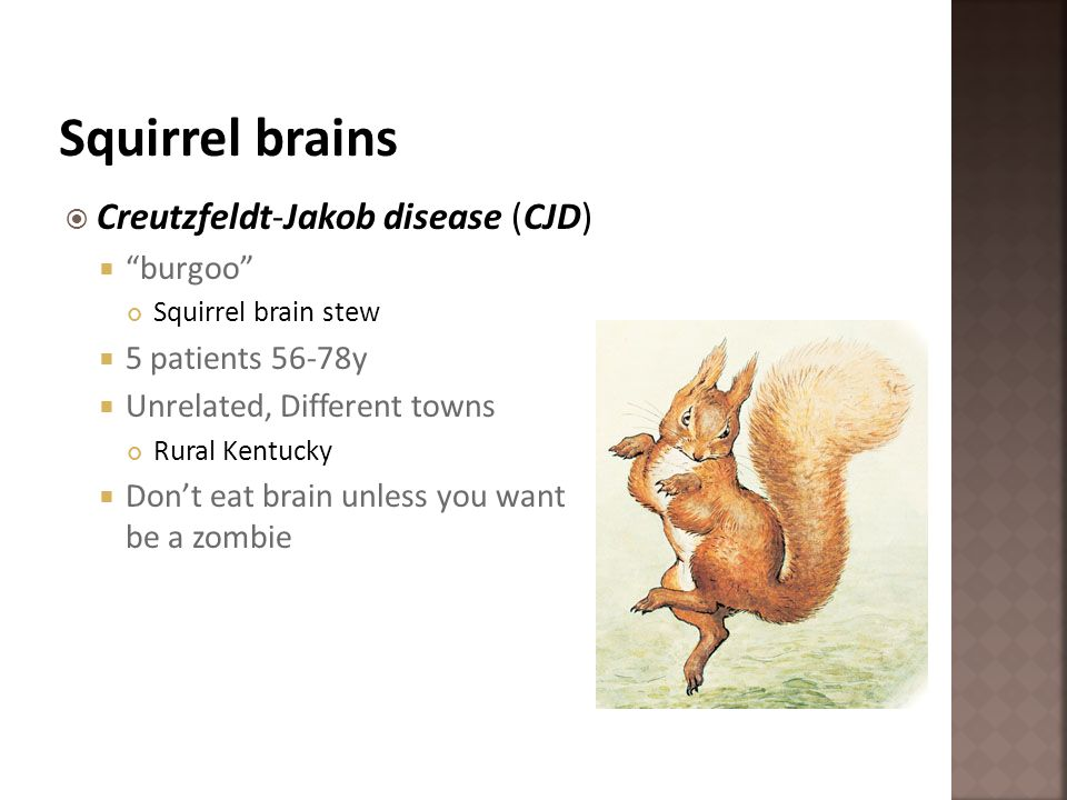 Squirrel brains Creutzfeldt-Jakob disease (CJD) burgoo