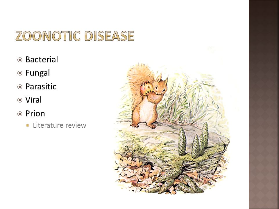 Zoonotic Disease Bacterial Fungal Parasitic Viral Prion