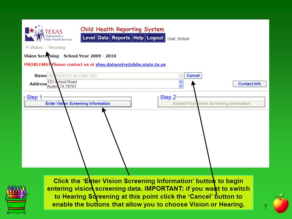 Click the 'Enter Vision Screening Information' button to begin entering vision screening data.