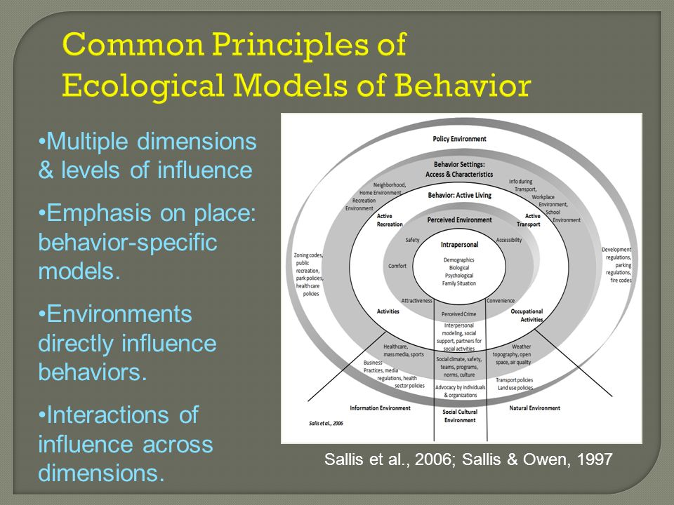 Common Principles of Ecological Models of Behavior