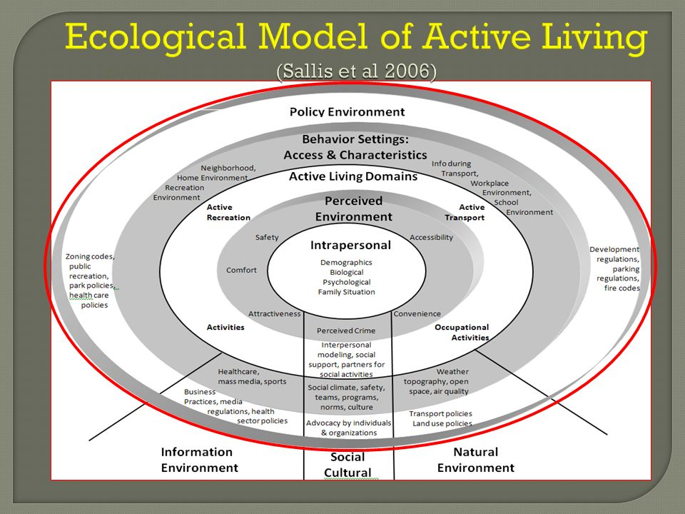 Ecological Model of Active Living (Sallis et al 2006)