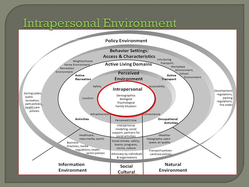 Intrapersonal Environment