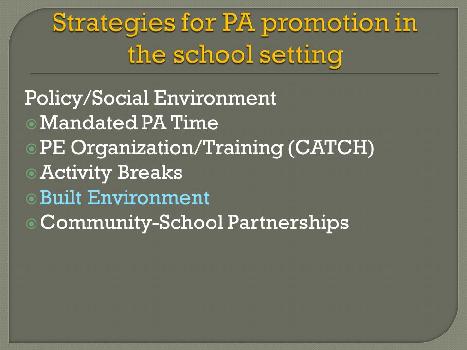 Strategies for PA promotion in the school setting