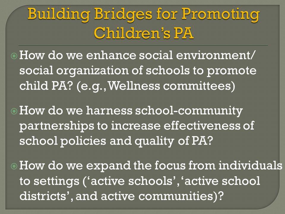 Building Bridges for Promoting Children's PA