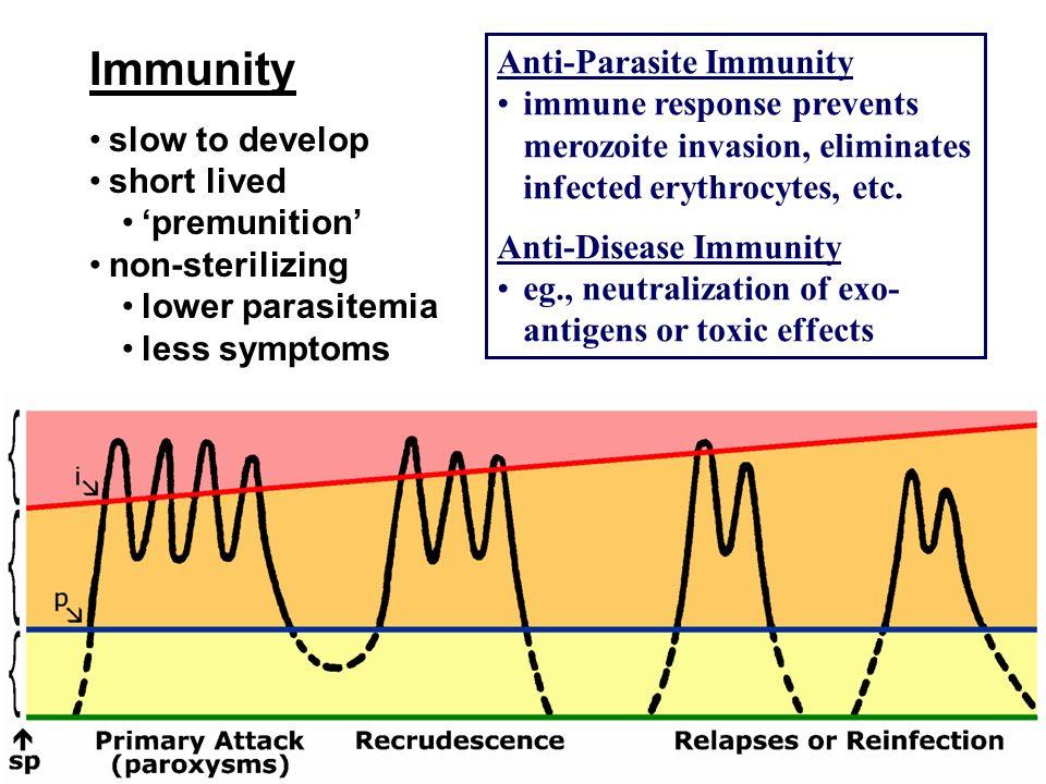 Immunity Anti-Parasite Immunity