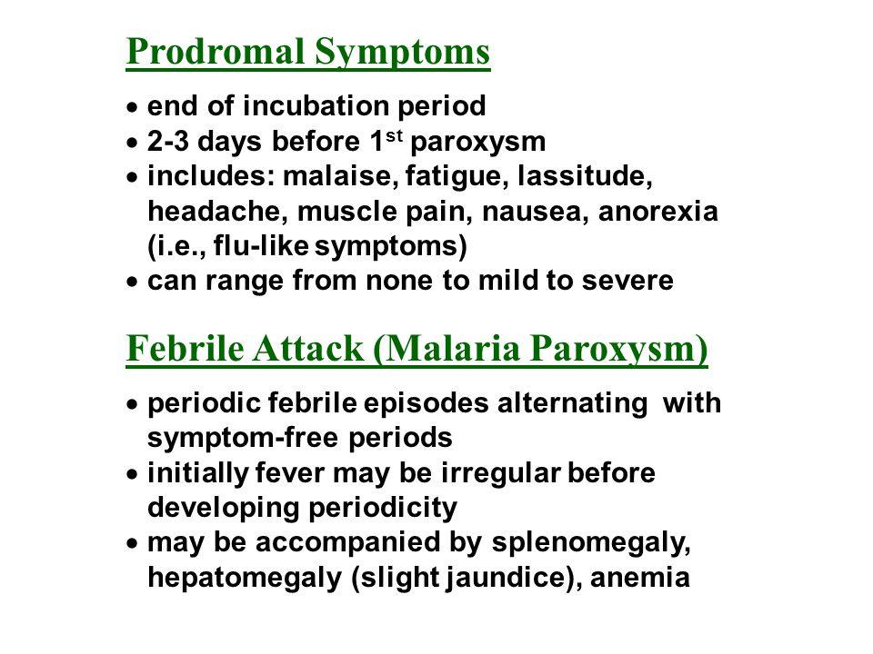 Febrile Attack (Malaria Paroxysm)
