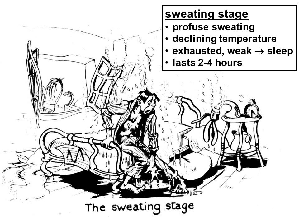 sweating stage profuse sweating declining temperature