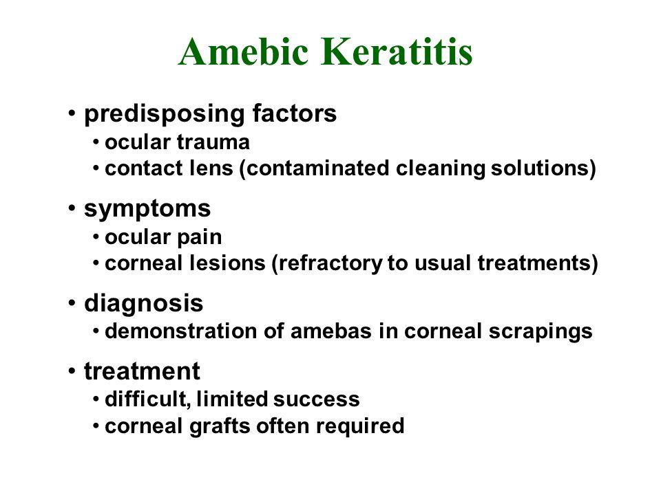 Amebic Keratitis predisposing factors symptoms diagnosis treatment