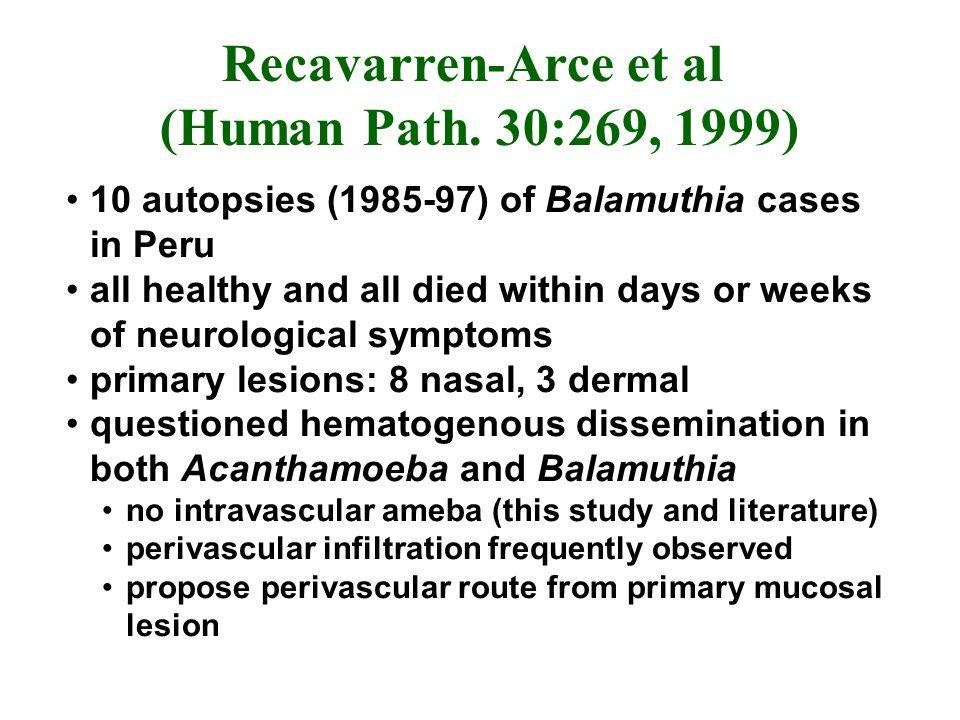 Recavarren-Arce et al (Human Path. 30:269, 1999)
