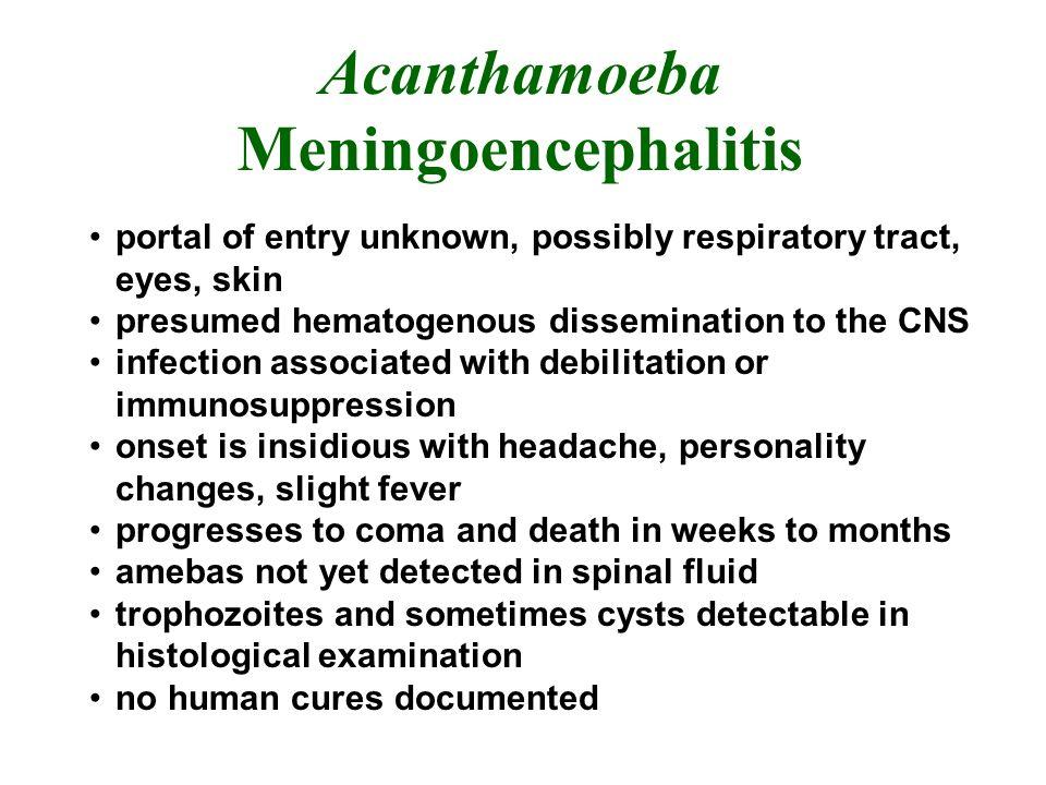 Acanthamoeba Meningoencephalitis