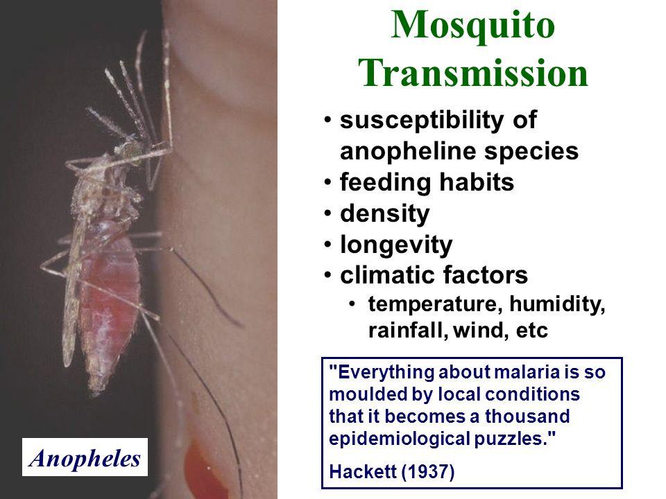 Mosquito Transmission