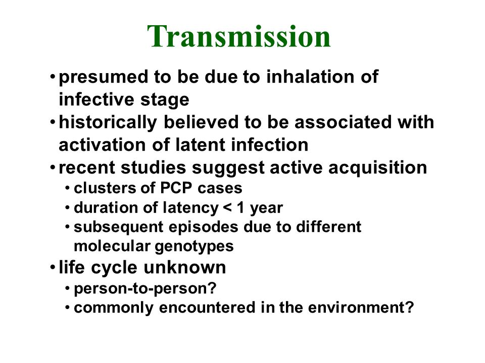 Transmission presumed to be due to inhalation of infective stage