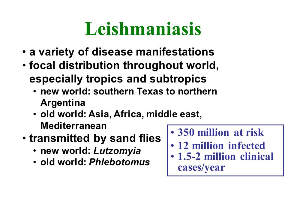 Leishmaniasis a variety of disease manifestations