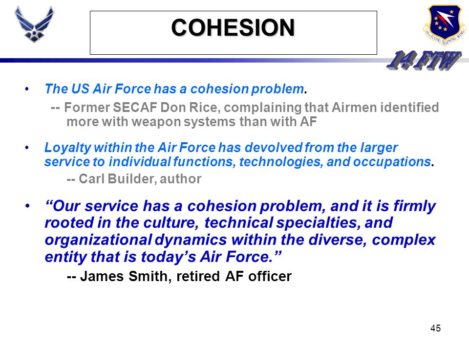 COHESION The US Air Force has a cohesion problem. -- Former SECAF Don Rice, complaining that Airmen identified more with weapon systems than with AF.