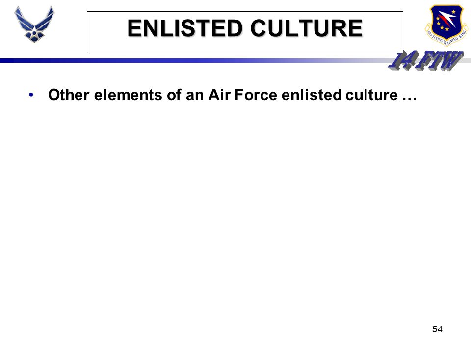ENLISTED CULTURE Other elements of an Air Force enlisted culture …