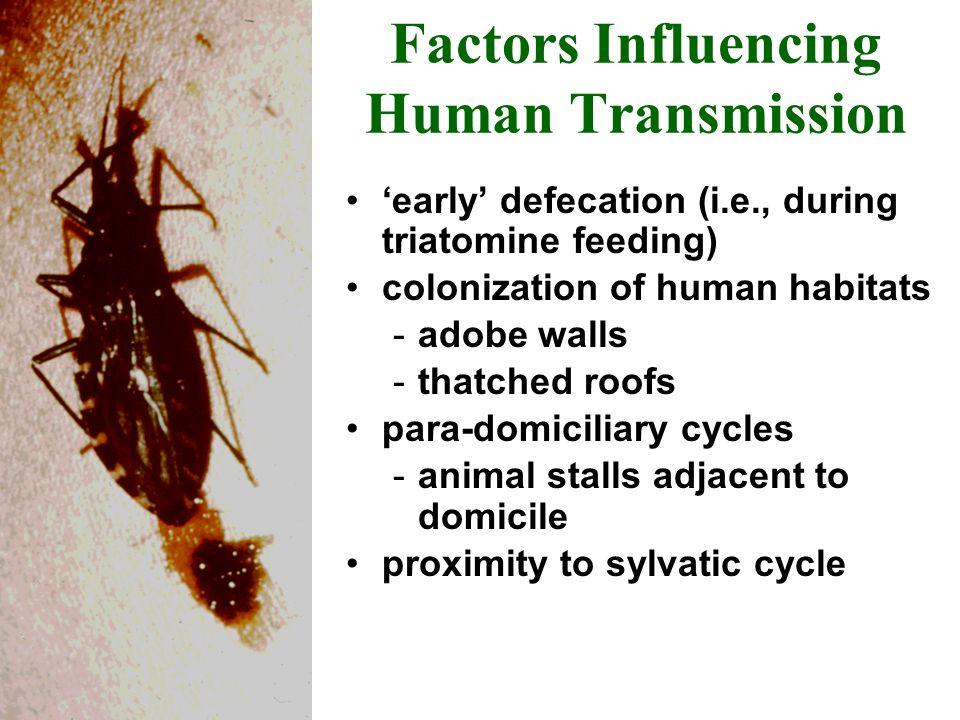Factors Influencing Human Transmission