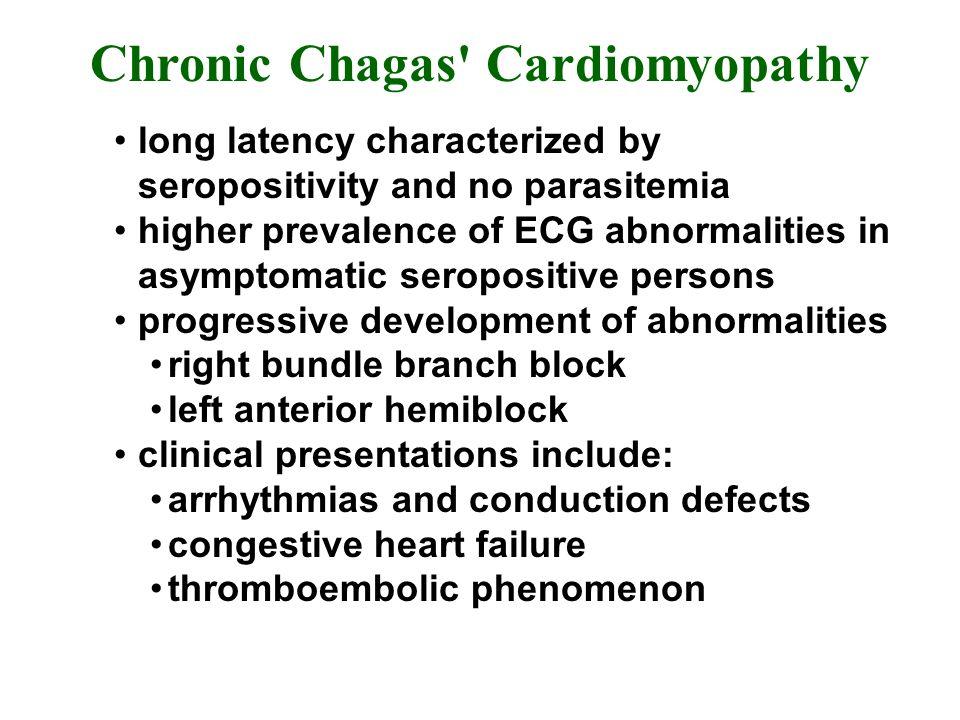 Chronic Chagas Cardiomyopathy