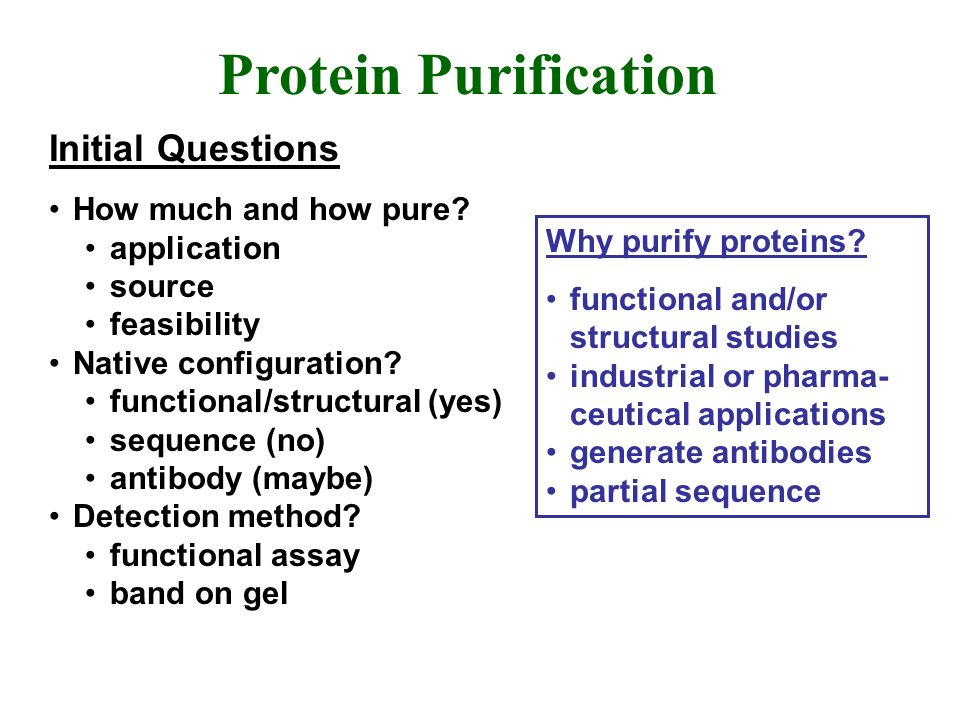 Protein Purification Initial Questions How much and how pure