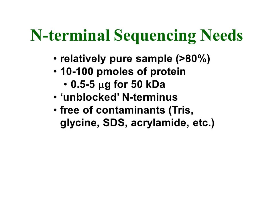 N-terminal Sequencing Needs