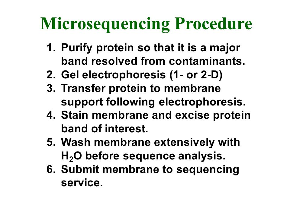 Microsequencing Procedure