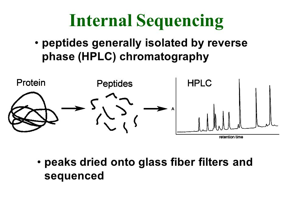 Internal Sequencing peptides generally isolated by reverse phase (HPLC) chromatography.