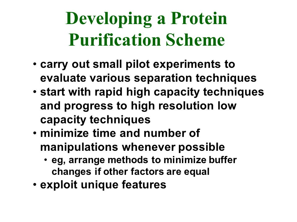 Developing a Protein Purification Scheme