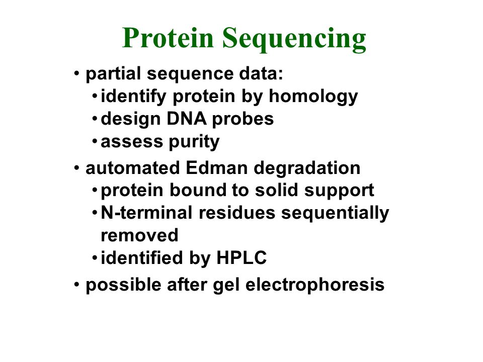 Protein Sequencing partial sequence data: identify protein by homology