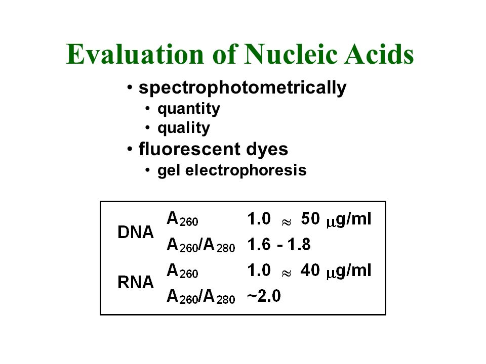 Evaluation of Nucleic Acids