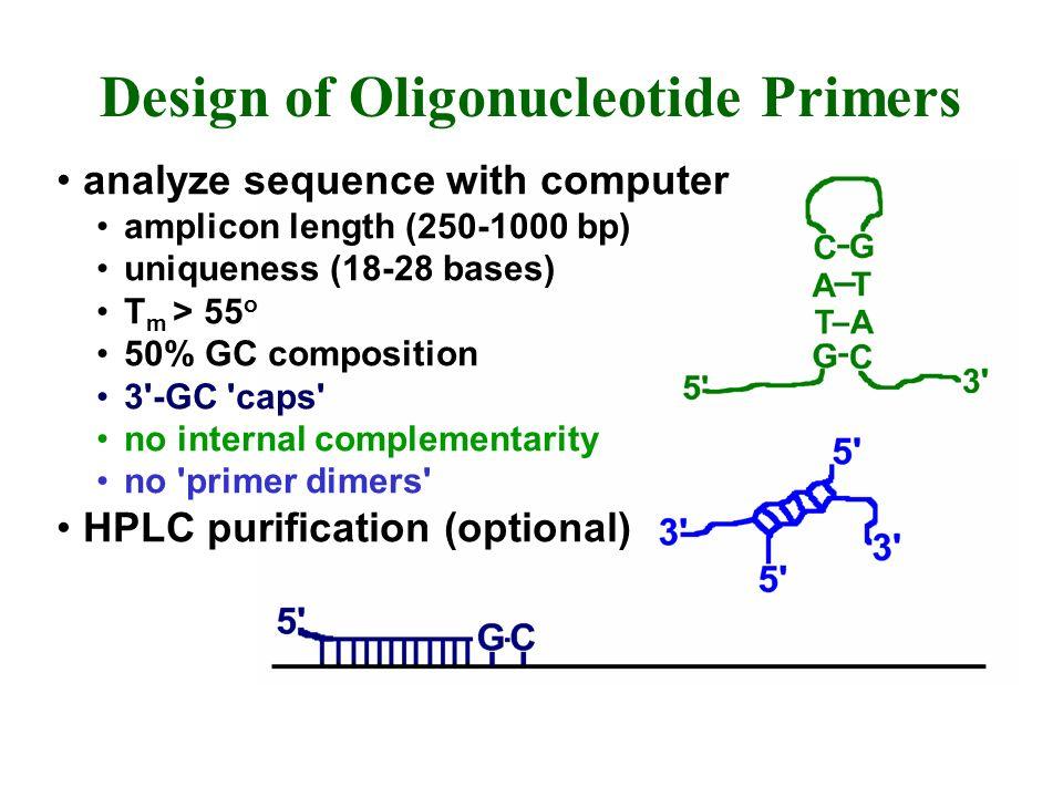 Design of Oligonucleotide Primers