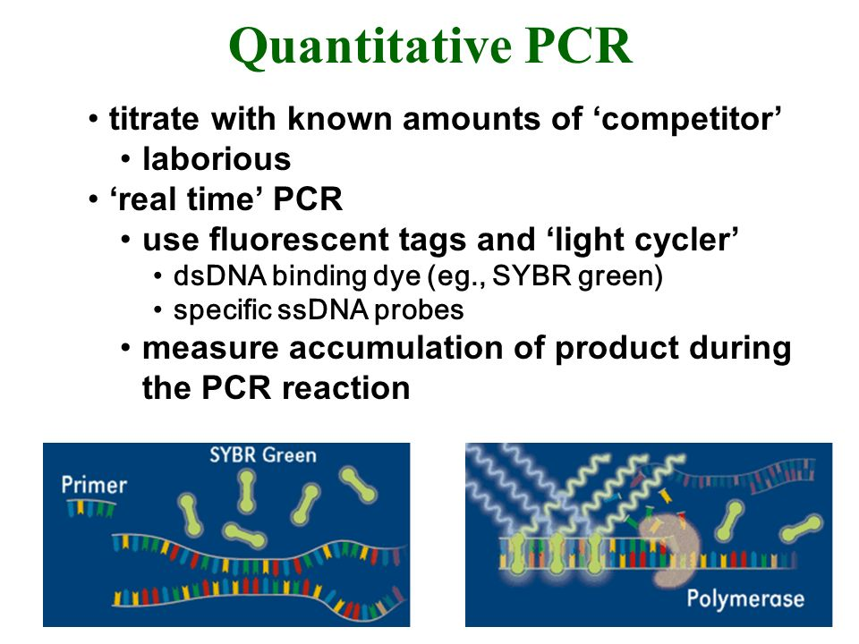 Quantitative PCR titrate with known amounts of 'competitor' laborious