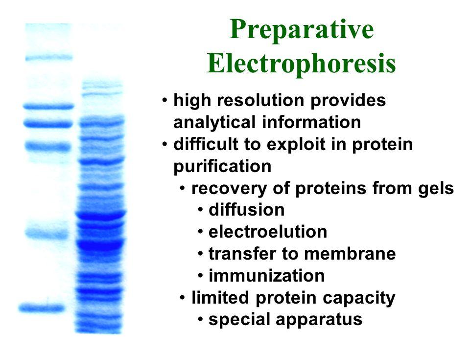 Preparative Electrophoresis