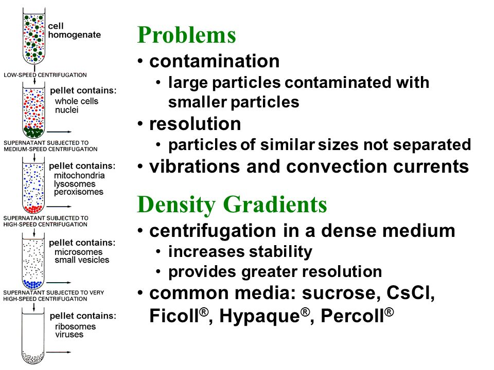 Problems Density Gradients contamination resolution