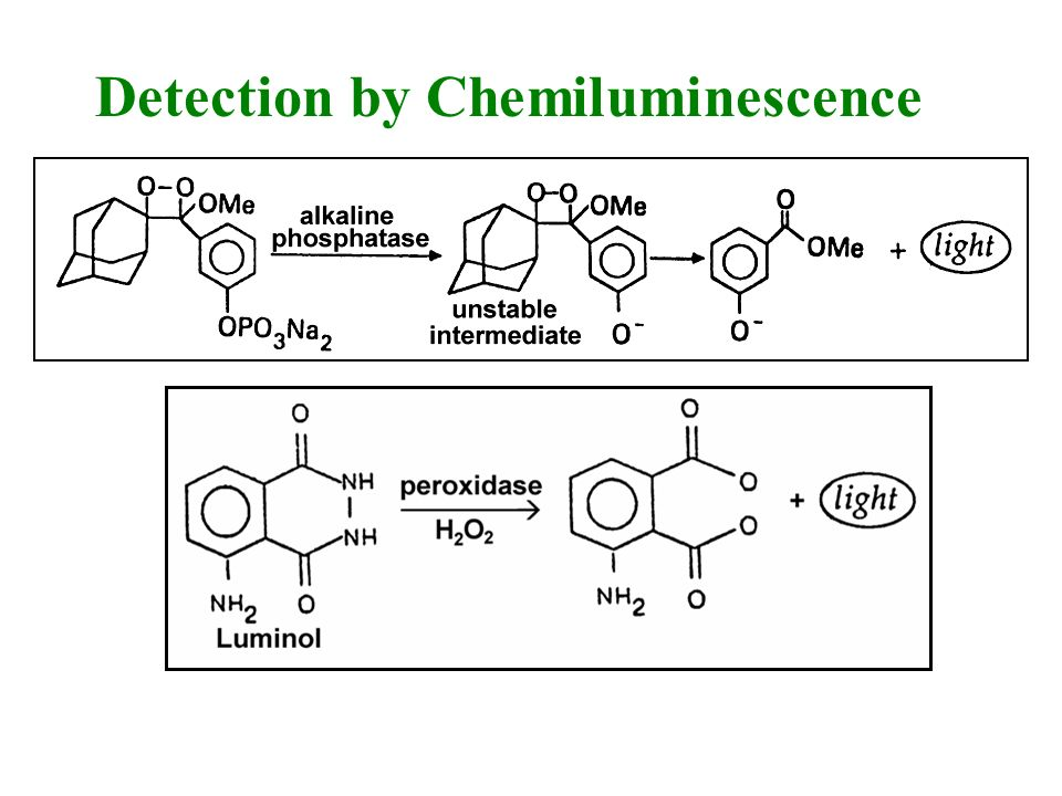 Detection by Chemiluminescence