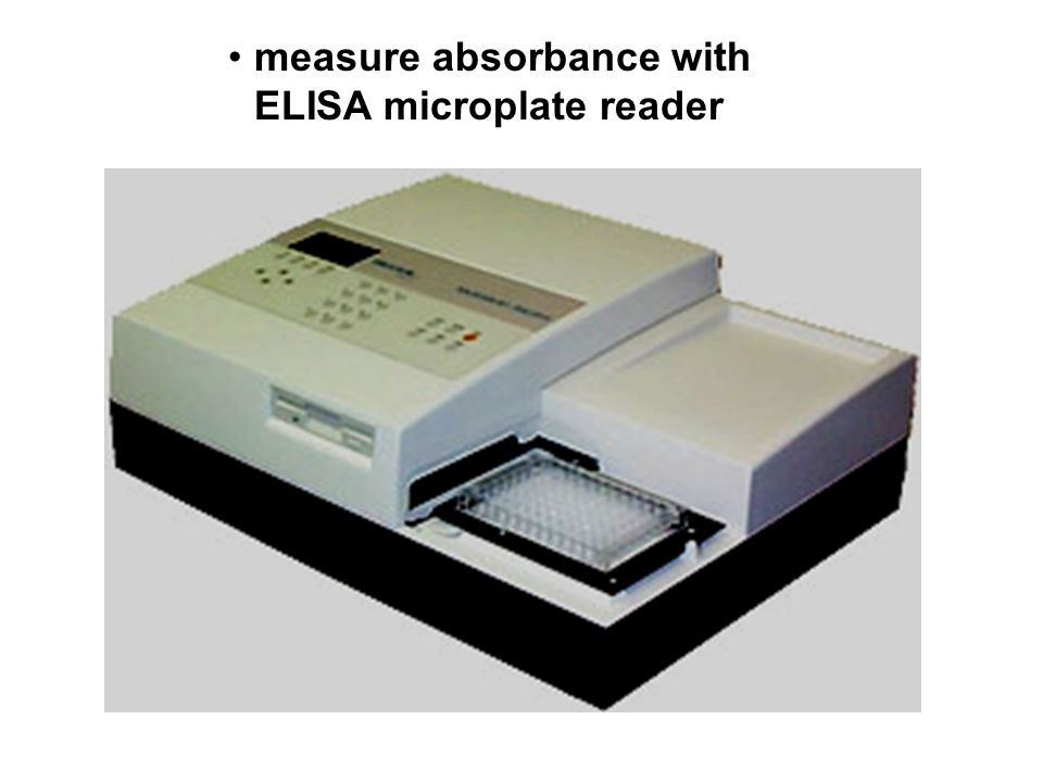 measure absorbance with ELISA microplate reader