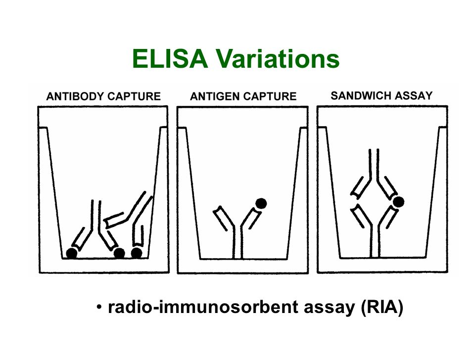 ELISA Variations radio-immunosorbent assay (RIA)