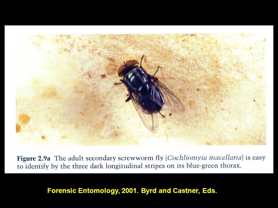 Forensic Entomology, 2001. Byrd and Castner, Eds.